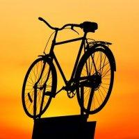 ARTÍCULO: El uso de la bicicleta